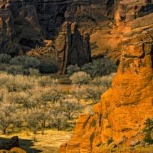 Canyon di Chelly_DSC0476
